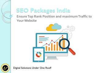 Best SEO Packages Ensure Top Rank Position and Maximum Traffic