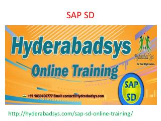 The Best SAP SD Online Training in USA, UK, Canada.