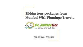 Sikkim tour packages from Mumbai of flamingo travels