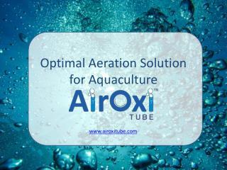 Optimal Aeration Solution for Aquaculture - AirOxi Tube