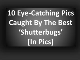 10 Eye-Catching Pics Caught By The Best 'Shutterbugs' [In Pics]