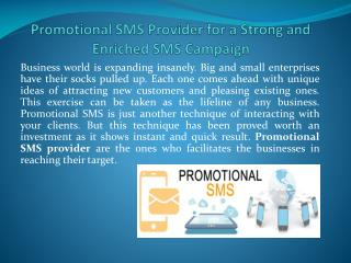 Promotional SMS Provider for a Strong and Enriched SMS