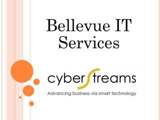 Best Bellevue IT services Company