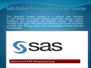 SAS Online Training Certificate Course