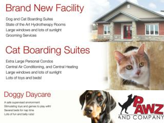 Best Pet Sitting   Dog Walking, Kennels, Grooming Lindsay Toronto   Pawz and Company