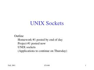 UNIX Sockets