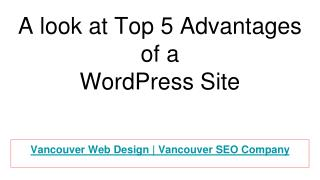 A look at Top 5 Advantages of a WordPress Site