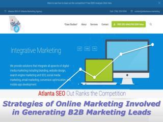 Strategies of Online Marketing Involved in Generating B2B Marketing Leads | Dan Anton