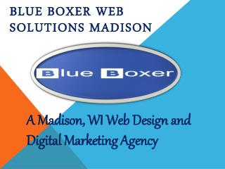 Blue Boxer Web Solutions Madison