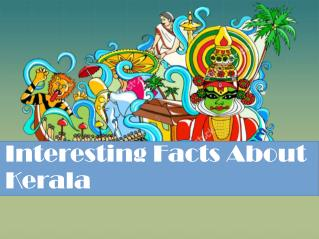 Some Interesting Facts About Kerala You Must Know