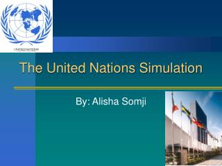 The United Nations Simulation