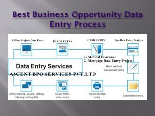Best Business Opportunity outsourcing data entry projects