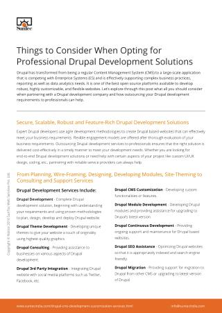 Things to Consider When Opting for Professional Drupal Development Solutions