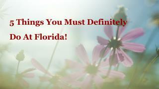 5 Things You Must Definitely Do At Florida | Florida Resorts Holidays