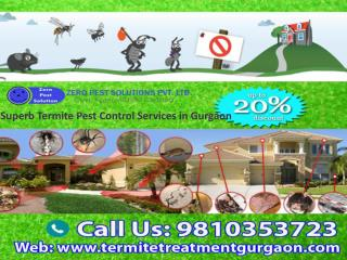 Superb Termite Pest Control Services in Gurgaon 9810353723