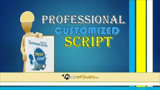 Professional Customized Script