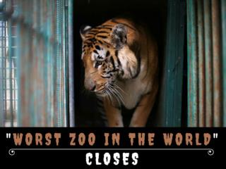 """Worst zoo in the world"" closes"