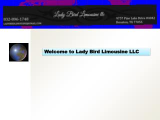 Welcome to Lady Bird Limousine LLC