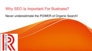 Why SEO Is Important For Business ?