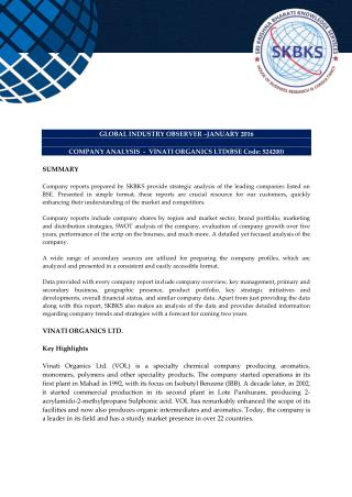 Company Analysis - Vinati Organics