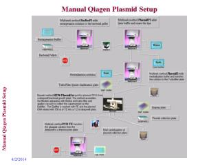 Manual Qiagen Plasmid Setup