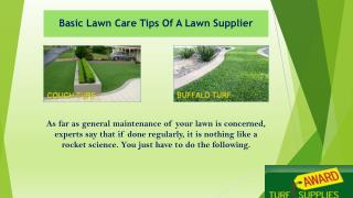 Basic Lawn Care Tips Of A Lawn Supplier