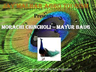 Morachi Chincholi -Mayur Baug