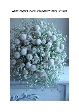 White Chrysanthemum For Fairytale Wedding Revelries