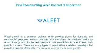 Few Reasons Why Weed Control Is Important