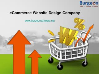eCommerce Website Design - Experienced eCommerce Designers