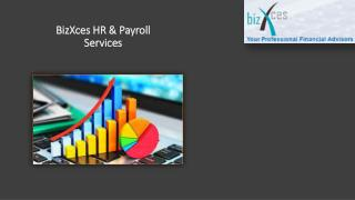 BizXces HR AND PAYROLL SERVICES