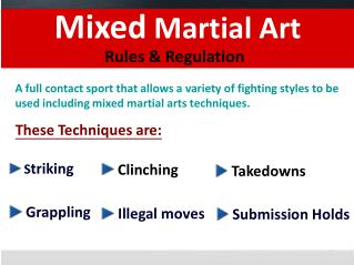 Mixed Martial Art Rules & Regulation