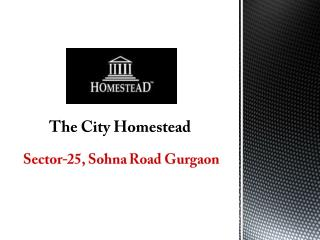 The City of Homestead Sector 25 Sohna Road Gurgaon – Investors Clinic