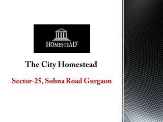 The City of Homestead Sector 25 Sohna Road Gurgaon � Investors Clinic
