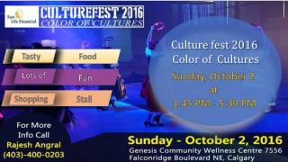 Cultural Festival 2016