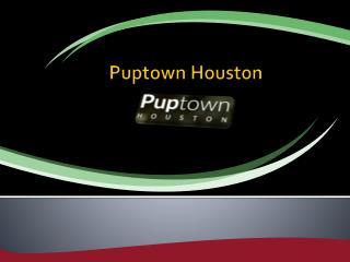 Puptown Houston