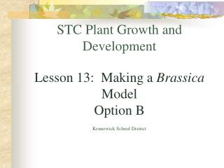 STC Plant Growth and Development   Lesson 13:  Making a Brassica Model Option B  Kennewick School District