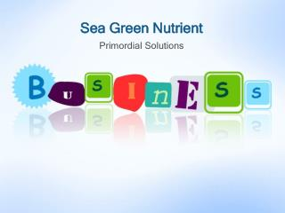 Sea Green Nutrient |Primordial Solutions
