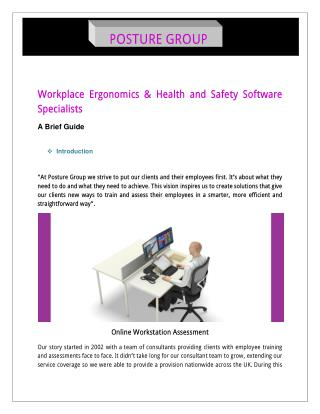 Workstation Assessment and Health & Safety Training BY Posture Group