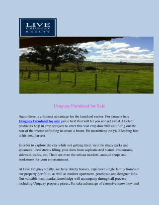 Uruguay farmland for sale