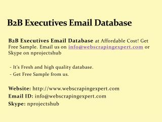 B2B Executives Email Database