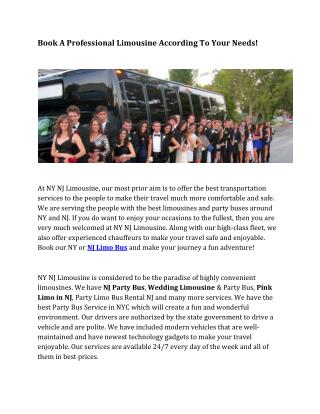 Best Price Party Bus