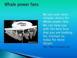 Whale power fans