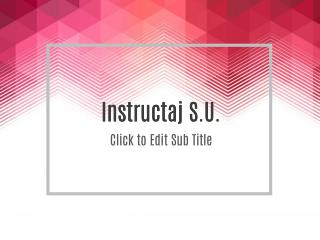 Instructaj S.U.