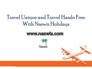 Travel Unique and Travel Hassle Free With Naswiz Holidays