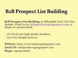 B2B Prospect List Building