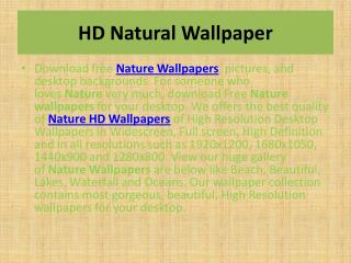 Nature Wallpapers | Nature HD Wallpapers