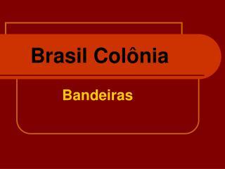 Brasil Col nia