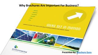 Why Brochures Are Important For Business?