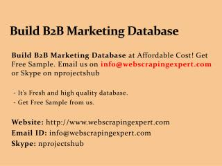 Build B2B Marketing Database
